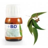 Aceite esencial Eucalipto 100%